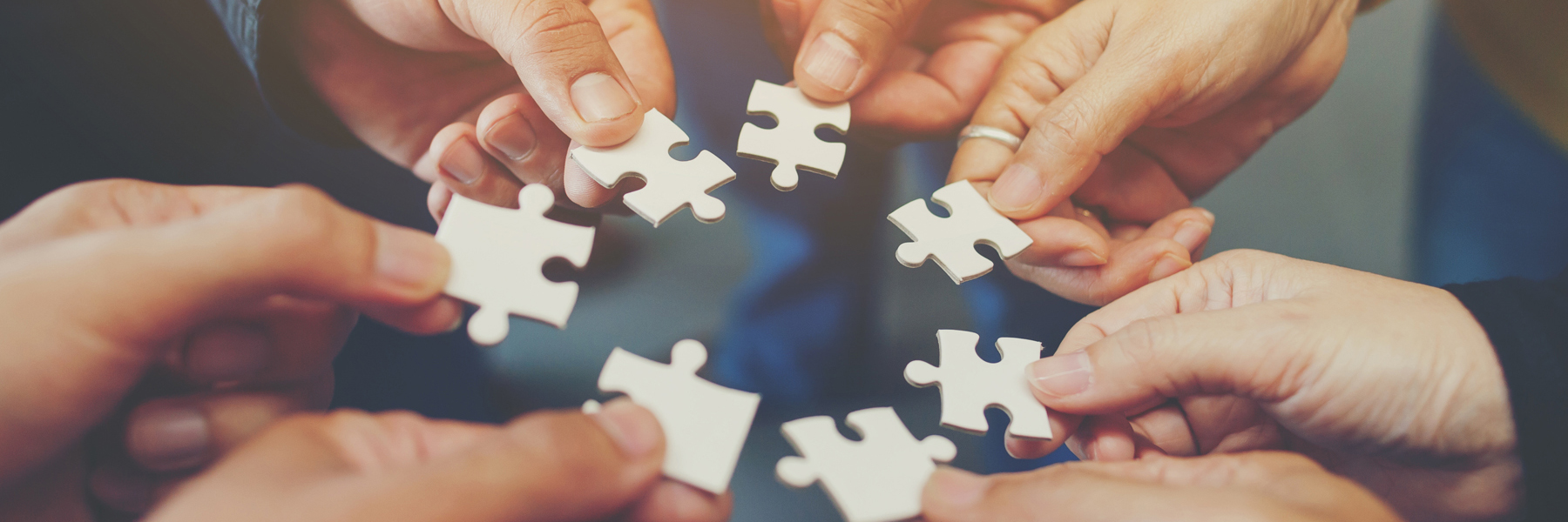 Das Bild zeigt sieben Hände, die Puzzleteile zusammenfügen.